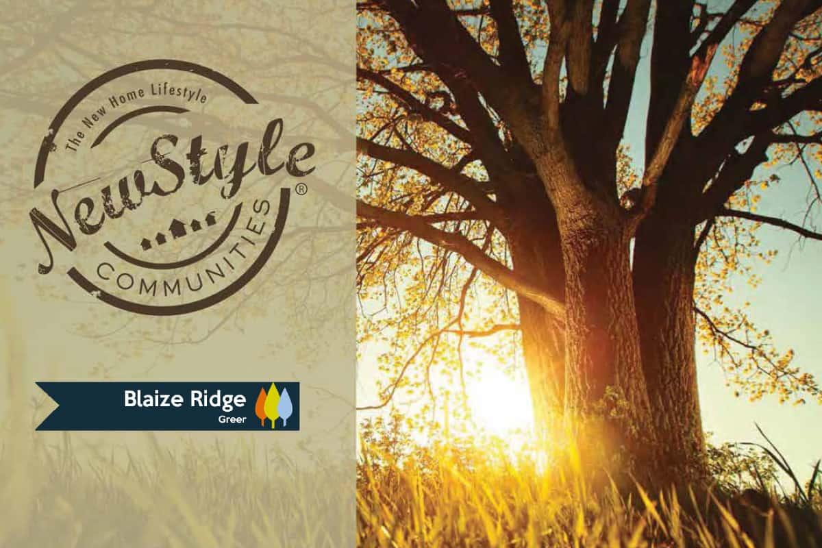 NewStyle Communities Blaize Ridge Brochure Thumbnail