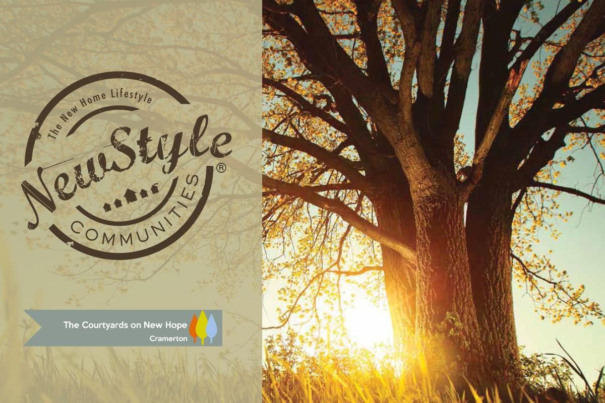 NewStyle Communities New Hope Brochure Thumbnail